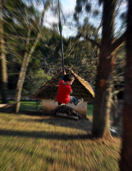 Balanço do Tarzan